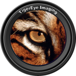 TigerEye Imaging Lens Logo copy